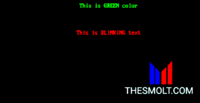 C Programming code for blinking Text