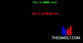 C Programming code for blinking Text