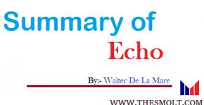 Summary of Echo